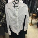 Рубашка белая. Фото 1. Санкт-Петербург.