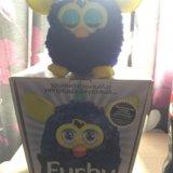 Furby. Фото 2. Москва.