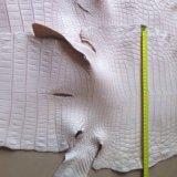 Кожа нильского крокодила. Фото 2.