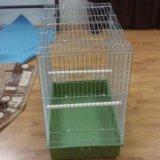 Клетка для попугая imac. Фото 2.