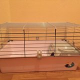 Клетка для кролика или любых грызунов с домиком. Фото 3.
