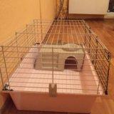 Клетка для кролика или любых грызунов с домиком. Фото 2.