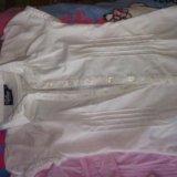 Блузки, рубашки в школу. Фото 3.