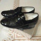 Туфли из крокодиловый кожи. Фото 1.
