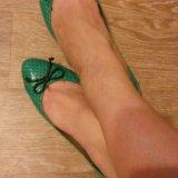 Продам балетки из натуральной кожи змии. Фото 1.