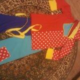 Карнавальный костюм петрушки. Фото 1.
