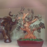Дерево интерьерное. Фото 1. Москва.
