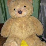 Медведь. Фото 1. Ухта.