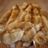 Шкура лисы. Фото 1.