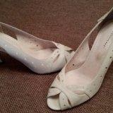 Туфли cоvani размер 39новые. Фото 1.