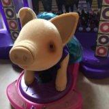 Свинка муз подиум. Фото 2. Москва.