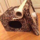 Домик для кошки с когтеточкой. Фото 1.