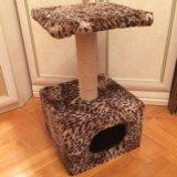 Домик для кошки с когтеточкой. Фото 4.