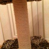 Домик для кошки с когтеточкой. Фото 2.