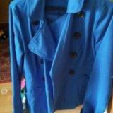 Пальто и куртка. Фото 1.