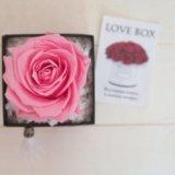 Стабилизированный розы. Фото 1.