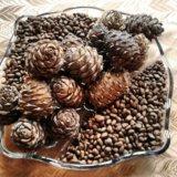 Ядро кедрового ореха. Фото 2. Новокузнецк.
