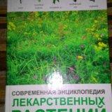 Энциклопедия лекарственных растений. Фото 1. Каспийск.