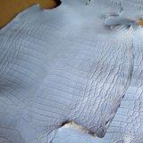 Шкурки/кожа нильского крокодила. Фото 1.