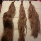 Волосы южка. Фото 2. Всеволожск.
