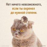 Ольга Ф.