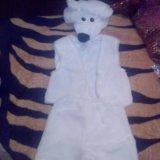 Новый костюм медведя. Фото 1.