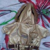Комплект куртка+ шапка с шарфом для собаки. Фото 1.