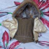 Комплект куртка+ шапка с шарфом для собаки. Фото 3.