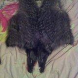 Продам жилетку из чернобурки. Фото 1.