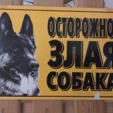 "Табличка ""осторожно злая собака"". Фото 1."