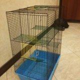 Клетка для грызунов. Фото 2. Боровск.
