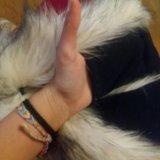 Волкошапка (шапка волк) оригинал. Фото 2.