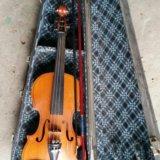 Скрипка. Фото 2.
