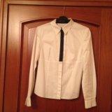 Деловая рубашка васса. Фото 1.