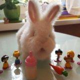Интерактивный кролик кузя. Фото 1. Москва.
