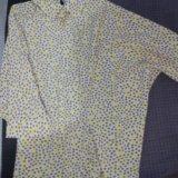 Блузы. Фото 3.