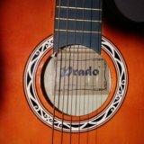 Гитара 6 струн. в месте с чехлом зимним. Фото 3. Москва.