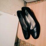 Туфли кожаные (офисные). Фото 1.