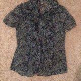 Блузка с коротким рукавом. Фото 1. Химки.