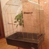 Клетка для птицы. Фото 2.