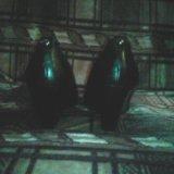 Женские туфли. Фото 2. Раменское.