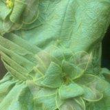 Красивое праздничное платье. Фото 3. Белгород.