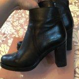 Зимние женские ботинки карло пазолини. Фото 3. Химки.