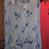 Блузка 48 размер. Фото 1. Подольск.