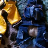 Одежда для маленькой собачки. Фото 1. Электросталь.