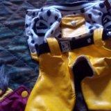 Одежда для маленькой собачки. Фото 2.