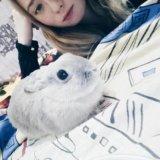 Кролик. Фото 2. Красноярск.