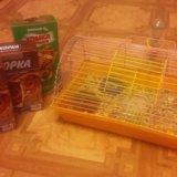 Хомяки с клеткой и запасом еды. Фото 4. Новоалтайск.