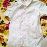 Белая рубашка. Фото 1. Сургут.