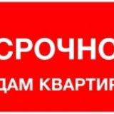 Сдам однокомнатную квартиру. Фото 1. Черногорск.